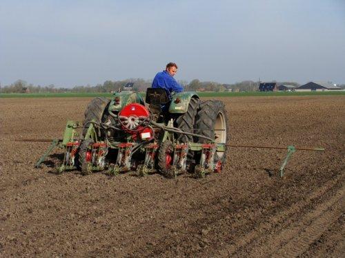 Foto van een Deutz D4005, bezig met spinazie zaaien. De buren met hun Deutz D4005 en 6-rijige zaaimachine. kijk voor meer op http://www.landbouwfoto.nl