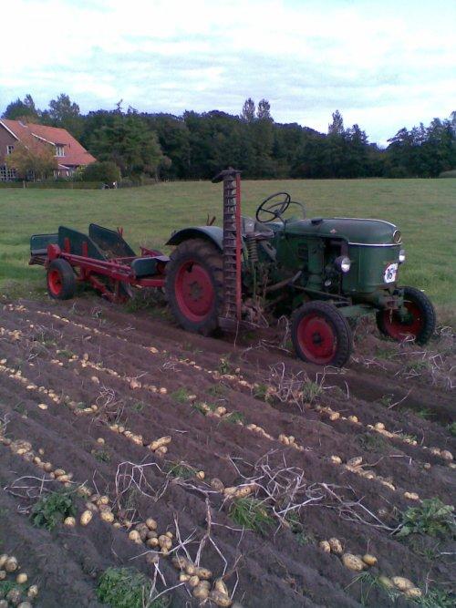Foto van een Deutz D15, bezig met aardappels rooien.. Geplaatst door international xl op 27-02-2011 om 11:49:09, met 18 reacties.