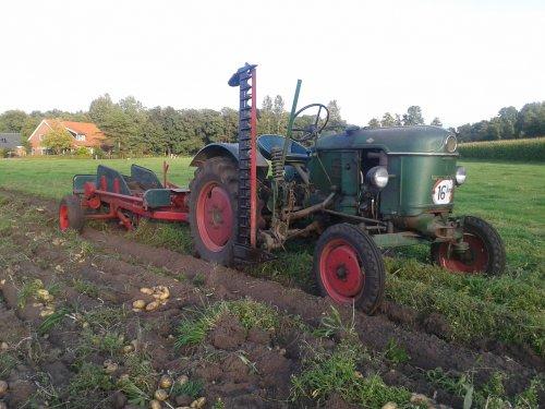 Foto van een Deutz D15, bezig met aardappels rooien. En een Romas rooier.. Geplaatst door international xl op 03-09-2012 om 20:46:25, met 4 reacties.