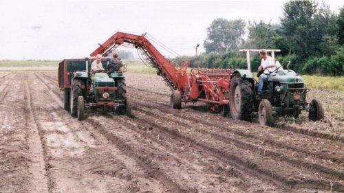 Foto van een Deutz Meerdere, bezig met aardappels rooien.in 2000, rooien met de d55 voor amac d2, en 5006 voor de spijkstaal.