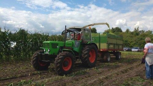 Foto van een Deutz D8006 bezig met maishakselen.  Tijdens de Historischer feldtag 2016 Nordhorn.. Geplaatst door JoranK op 15-08-2016 om 00:00:59, op TractorFan.nl - de nummer 1 tractor foto website.
