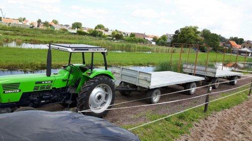 Foto van een Deutz D7206. Geplaatst door jippe op 09-11-2016 om 21:28:25, op TractorFan.nl - de nummer 1 tractor foto website.