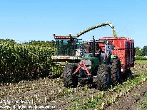Foto van een Deutz-Fahr Agroprima 6.06 , melkveebedrijf Wajer uit Hulshorst aan het mais hakselen. ZIE OOK DE VIDEO  https://youtu.be/orCdXqSng_s
