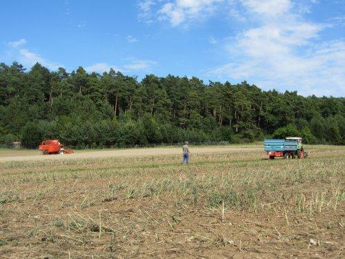 Deutz-Fahr D 6206 van tractorfreek