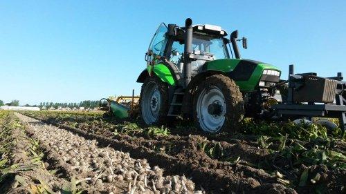 Loonbedrijf van Steijn uit de Zilk bezig met Hyacinten op voorraad rooien in Noordwijkerhout.. Geplaatst door RobDeutz104 op 06-06-2015 om 21:54:54, met 3 reacties.