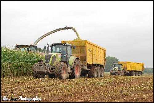 Hoerens - Zottegem.. Geplaatst door Lille Jens op 09-10-2019 om 17:56:06, op TractorFan.nl - de nummer 1 tractor foto website.