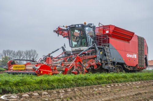 De nieuwste generatie van Dewulf rooiers in actie!!. Geplaatst door Jan Ramon op 26-11-2016 om 16:12:08, op TractorFan.nl - de nummer 1 tractor foto website.