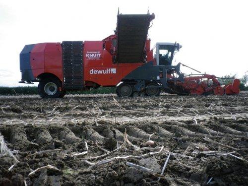 Foto van een Dewulf Kwatro, bezig met aardappels rooien.. Geplaatst door Bruukertje op 18-10-2011 om 18:33:24, op TractorFan.nl - de nummer 1 tractor foto website.