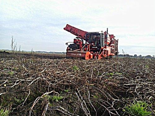 Landbouw & Loonbedrijf Evenhuis aan het aardappels rooien met hun eigen Dewulf RA3060 en met nog een bijgehuurde Dewulf RA3060. Een steyr 4110 en een Steyr CVT 6230 bedroegen de afvoercombi's.  Voor meer info, kijk gerust even op de site: http://www.evenhuisvof.nl/