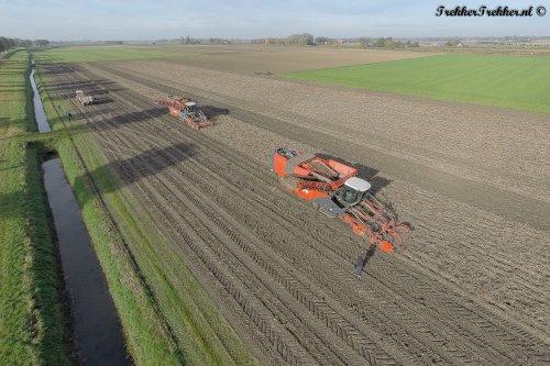 Aardappels rooien door twee Dewulf Kwatro's, waaronder versie 2016, het prototype.  Meer te zien op: http://www.trekkertrekker.nl/  Wordt ook lid van onze Facebook: http://www.facebook.com/TrekkerTrekker.nl
