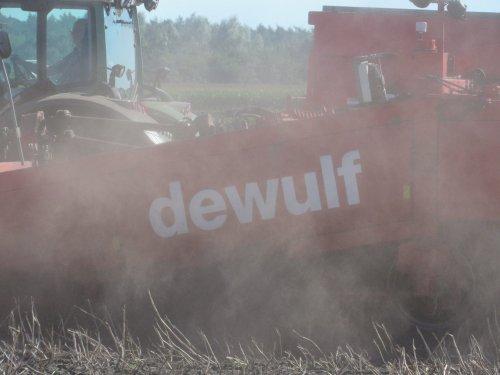 Foto van een Dewulf Meerdere. Geplaatst door jans-eising op 29-08-2016 om 15:41:48, op TractorFan.nl - de nummer 1 tractor foto website.