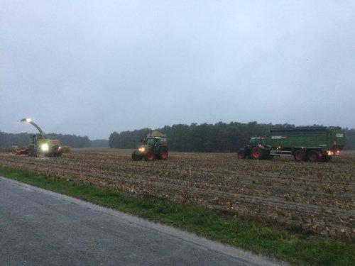 Foto van een Dezeure Silagewagen Silocruiser. Loonbedrijf Kemps Mais 2019.. Geplaatst door StijnTheDeereDriver op 24-10-2019 om 23:50:35, op TractorFan.nl - de nummer 1 tractor foto website.