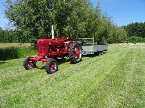 Foto van een Farmall BM. Geplaatst door dickt op 22-05-2020 om 11:27:31, op TractorFan.nl - de nummer 1 tractor foto website.