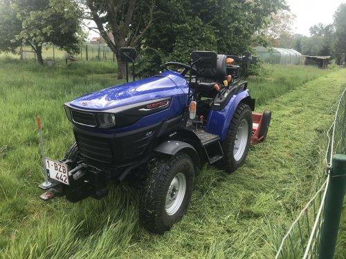 Vandaag een laagstamboomgaard gaan klepelen, toch handig zo'n kleine tractor. Geplaatst door inspecteurfendt op 04-05-2020 om 17:23:14, op TractorFan.nl - de nummer 1 tractor foto website.