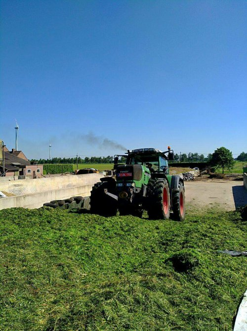 Gras bijrijden.... Geplaatst door Janssen656 op 28-05-2017 om 13:15:07, op TractorFan.nl - de nummer 1 tractor foto website.