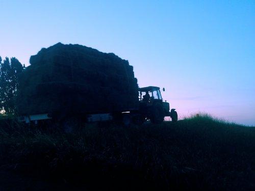 Foto van een Fendt 305 LS. Geplaatst door Quintto op 12-06-2018 om 07:18:08, op TractorFan.nl - de nummer 1 tractor foto website.