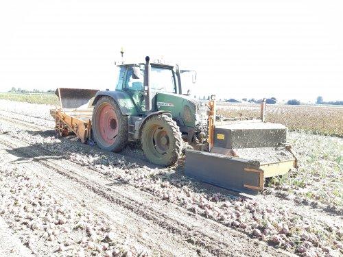 Foto van een Fendt 413, zaaiuien rooien met de nieuwe combinatie!. Geplaatst door Ritchie op 15-09-2019 om 16:35:23, op TractorFan.nl - de nummer 1 tractor foto website.