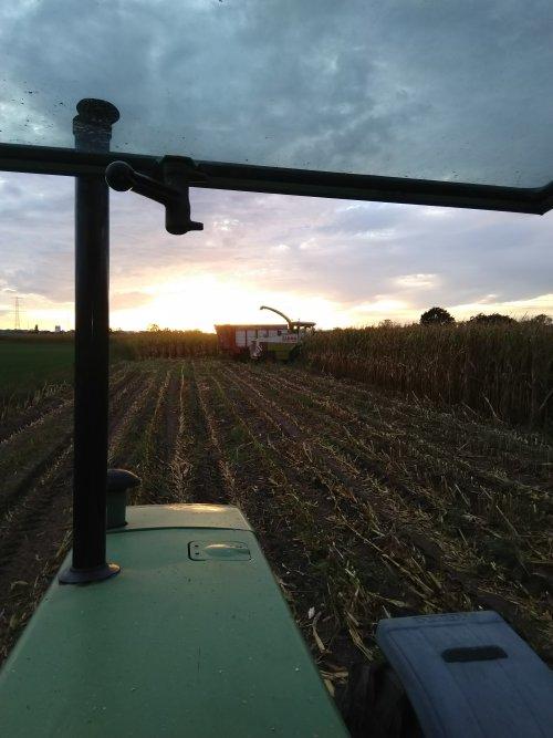 Foto van een Fendt 311 LSA. Een zeer mooi uitzicht 🌽😀. Geplaatst door fendt716,311driver op 27-09-2020 om 14:36:36, op TractorFan.nl - de nummer 1 tractor foto website.