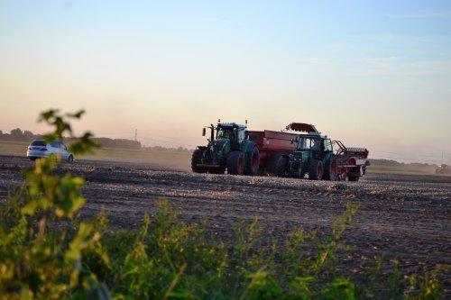 Foto van een Fendt Meerdere. Buijs Emmercompascuum.. Geplaatst door Lucas Ensing op 29-09-2020 om 21:27:16, op TractorFan.nl - de nummer 1 tractor foto website.