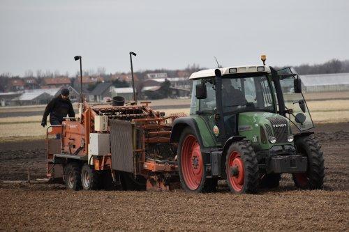 Foto van een Fendt 412 loonbedrijf CTB bezig met Alchemilla's rooien in Noordwijkerhout. Geplaatst door warmerbros op 19-02-2021 om 22:32:50, op TractorFan.nl - de nummer 1 tractor foto website.