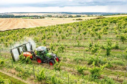 Fendt 209V in de wijngaard (2021). Geplaatst door FerreV op 02-08-2021 om 19:46:22, met 2 reacties.
