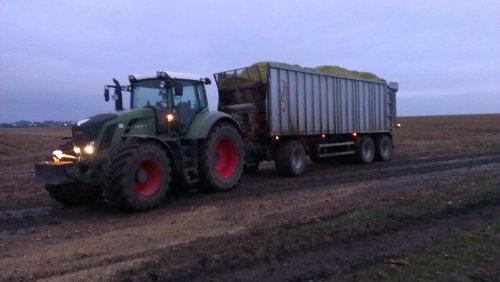 Foto van een Fendt 828, bezig met maïs hakselen.. Geplaatst door Fendt-LSA op 08-10-2013 om 15:41:40, met 5 reacties.