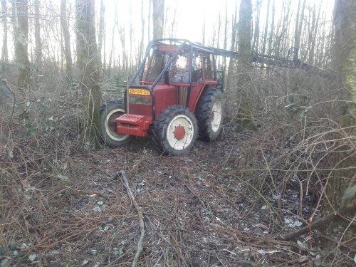 Landschapsbeheer Smit (Lisse) × met een Fiat 80-66.  Trekker tactisch geparkeerd voor de houtstapel met de klem op een andere stapel