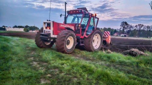 Zen ''vast werk'' ook FF vast gelegd. Geplaatst door stijntje1 op 28-06-2017 om 16:28:34, op TractorFan.nl - de nummer 1 tractor foto website.