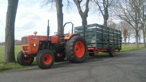 Foto van een Fiat 715 5L.  Ff een vrachtje schapen bij gehaald👌. Geplaatst door ford3000case745 op 31-03-2018 om 13:26:43, op TractorFan.nl - de nummer 1 tractor foto website.