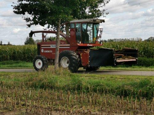 Foto van een Fiat 7835, druk in de mais.. Geplaatst door joostmc-cormick op 01-10-2019 om 15:55:22, op TractorFan.nl - de nummer 1 tractor foto website.
