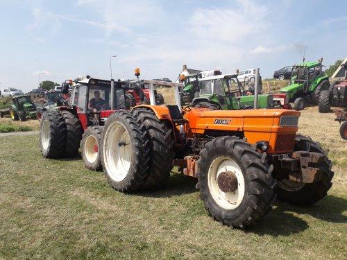 Kijken welke het sterkst is op de oldtimer trek uiteindelijk won de inter. Geplaatst door t6030power op 07-10-2019 om 20:14:44, op TractorFan.nl - de nummer 1 tractor foto website.
