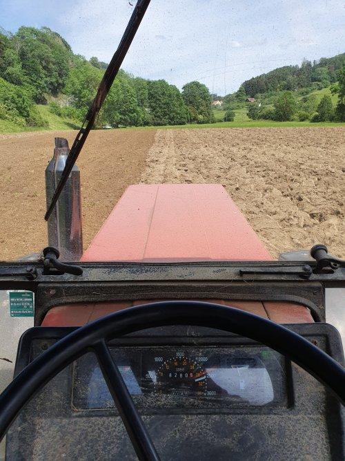 Foto van een Fiat 70-66. Geplaatst door Swiss Fiat Farm op 24-06-2020 om 12:28:17, op TractorFan.nl - de nummer 1 tractor foto website.
