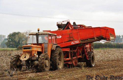 Af en toe trekken we wel eens de Belgische grens over naar Frankrijk. Niet heel ver, maar dit jaar waren we wel eens te vinden op de velden van landbouwer Bellengier uit Houtkerke, net tegen de grens.  Op 8 jarige leeftijd leerde Guillaume met een Someca 615 rijden, sindsdien heeft het hem niet meer los gelaten.  Zo doende zijn er in de loop der jaren heel wat Fiat tractoren bijkwamen op het landbouwbedrijf.  Deze knappe Someca 850 met vier wiel aandrijving is er één uit 1973 die hier mocht plaatsnemen aan de Grimme één rij .  meer op http://www.deoudedoos.be
