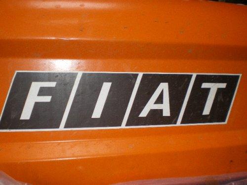 Foto van een Fiat logo, bezig met poseren.mooiii. Geplaatst door RKNIJBR op 20-02-2009 om 22:45:49, met 3 reacties.