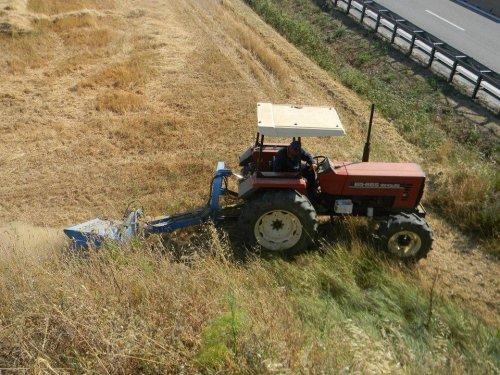 Foto van een Fiat 65-66, bezig met gras maaien in cecina foto gemaakt door Cor.. Geplaatst door warmerbros op 06-07-2013 om 11:08:21, op TractorFan.nl - de nummer 1 tractor foto website.