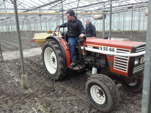 Foto van een Fiat 55-66 met Vicon pendelstrooier in de kas. Geplaatst door fiatjuh op 05-02-2016 om 20:00:59, op TractorFan.nl - de nummer 1 tractor foto website.