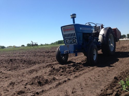 Foto van een Ford 3000 bezig met haspel uittrekken tussen jonge aanplant asperges. Geplaatst door blue-ford4600 op 09-06-2017 om 12:43:33, met 3 reacties.