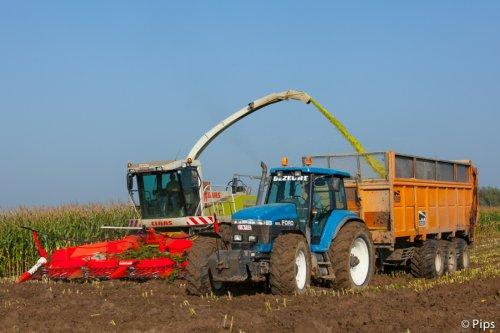Loonbedrijf Dezeure uit Veurne met een mooie Ford en Dezeure 3-asser.. (2010). Geplaatst door pips op 09-12-2013 om 18:25:33, op TractorFan.nl - de nummer 1 tractor foto website.
