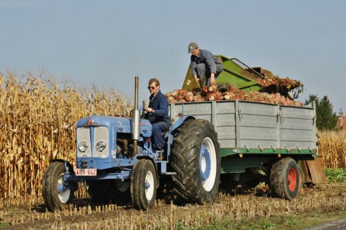 Fordson Super Major, foto van MMaarten