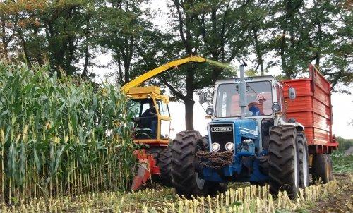 Foto van een Fox 6350 en een county 1164 met schuitemaker silagewagen aan het mais hakselen.. Geplaatst door marco steyr op 23-10-2017 om 18:52:02, op TractorFan.nl - de nummer 1 tractor foto website.