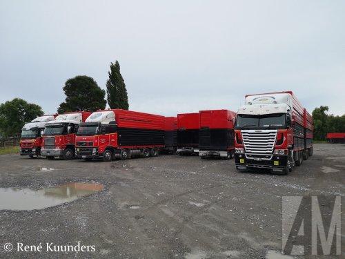 Foto van een Freightliner Argosy, opgebouwd voor dierenvervoer.. Geplaatst door Alex Miedema op 23-03-2019 om 21:05:32, op TractorFan.nl - de nummer 1 tractor foto website.
