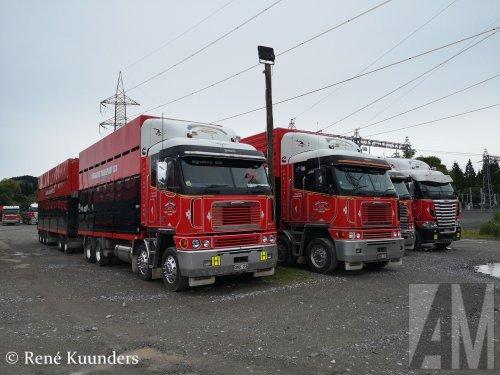 Foto van een Freightliner Argosy, opgebouwd voor dierenvervoer.. Geplaatst door Alex Miedema op 23-03-2019 om 21:05:34, op TractorFan.nl - de nummer 1 tractor foto website.