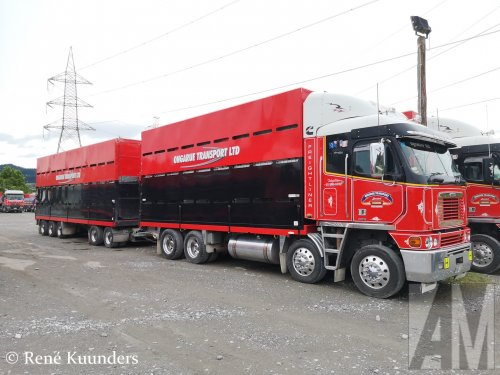 Foto van een Freightliner Argosy, opgebouwd voor dierenvervoer.. Geplaatst door Alex Miedema op 23-03-2019 om 21:05:35, op TractorFan.nl - de nummer 1 tractor foto website.