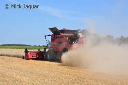 Case IH Axial Flow 6140 met maaibord 7,63 meter. Loonbedrijf Kools uit Cadzand (NL)   Filmpje? -> https://www.tractorfan.nl/movie/46358/