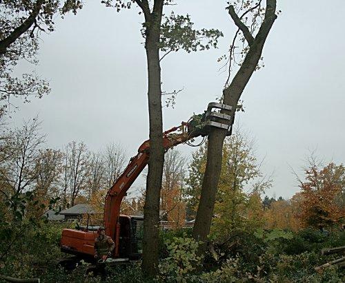 Foto van een Doosan DX160LC (kraan) aan het bomen vellen.. Geplaatst door nbomers op 14-11-2017 om 18:12:40, op TractorFan.nl - de nummer 1 tractor foto website.