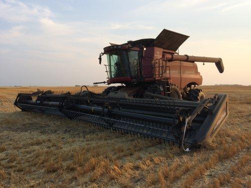 Foto van een Case IH Axial Flow 9230 met Macdon 40Ft flexdraper.. Geplaatst door Anh-tuan1996 op 13-02-2018 om 03:33:15, op TractorFan.nl - de nummer 1 tractor foto website.