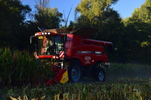 Loonbedrijf Noyens Sylveer. Geplaatst door jd7920 op 02-10-2018 om 00:00:44, op TractorFan.nl - de nummer 1 tractor foto website.