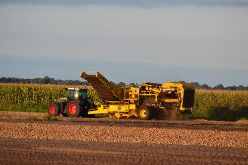 Foto van een Ropa Keiler II (aardappelrooier). Geplaatst door Lucas Ensing op 25-09-2019 om 12:41:28, op TractorFan.nl - de nummer 1 tractor foto website.