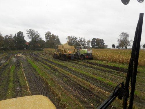 Vandaag alles op rupsen in de maïs. Met een bekende combi van Tractorfan in de afvoer trein.  Zo zie je maar weer, het is een klein wereldje. 😁
