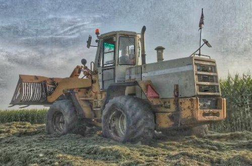 Foto van een International Shovel (shovel) bewerkte foto. Geplaatst door sybren op 02-12-2019 om 18:46:46, op TractorFan.nl - de nummer 1 tractor foto website.